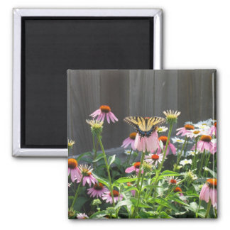 Butterfly and Cone Flowers Magnet