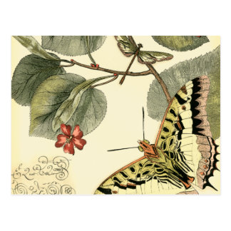 Butterfly and Dragonfly with Red Flowers Postcard