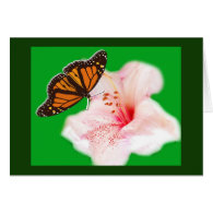 butterfly and flower cards
