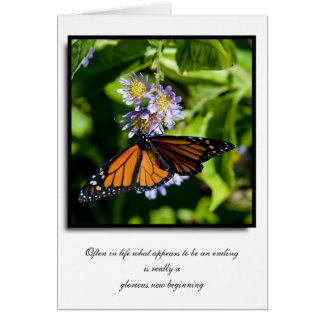 Butterfly and Flower Note Cards