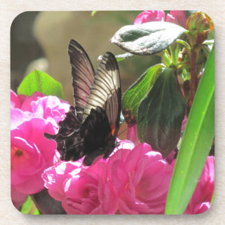 Butterfly and Flowers Drink Coaster