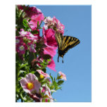 Butterfly and Flowers II Poster