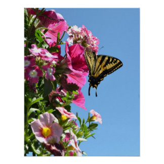 Butterfly and Flowers II Print