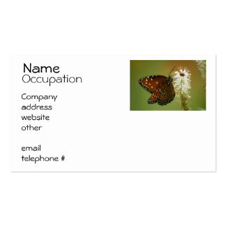 Butterfly and Ladybug Business Card