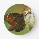 Butterfly and Ladybug Round Clocks