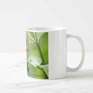 Butterfly and Milkweed Blooms Coffee Mug