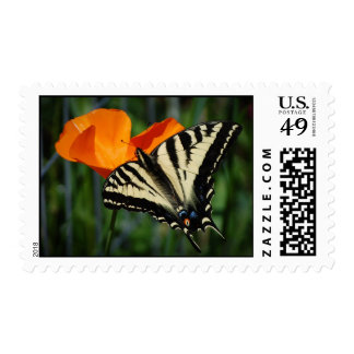 Butterfly And Orange California Poppy Postage