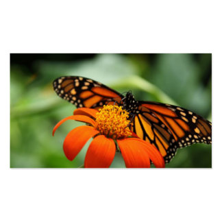 Butterfly and Orange Flower Double-Sided Standard Business Cards (Pack Of 100)