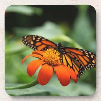 Butterfly and Orange Flower Drink Coaster
