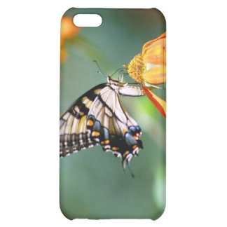 Butterfly and Orange Flower Case For iPhone 5C