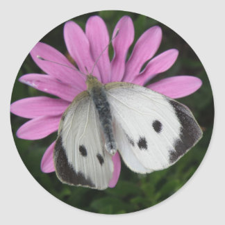Butterfly and Pink Flower Stickers