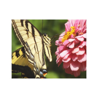 Butterfly and pink flower wrapped canvas
