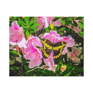 Butterfly and Pink Flowers - Canvas Print