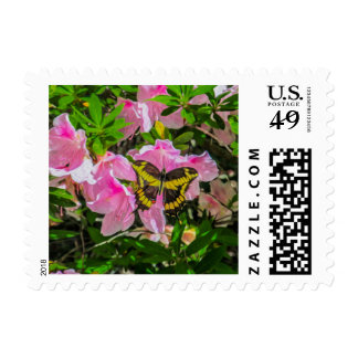 Butterfly and Pink Flowers - Postage Stamps