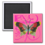 Butterfly and Pink Swirly Vines Magnet