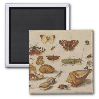 Butterfly and Shell Magnent 2 Inch Square Magnet