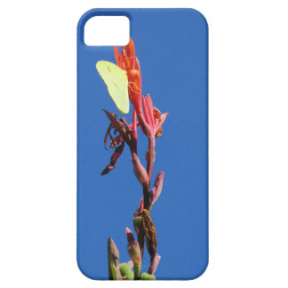 Butterfly And Sky iPhone 5/5S Case