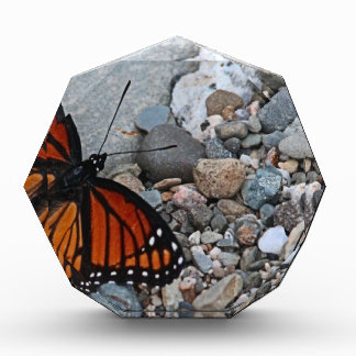 Butterfly and Stones Acrylic Award