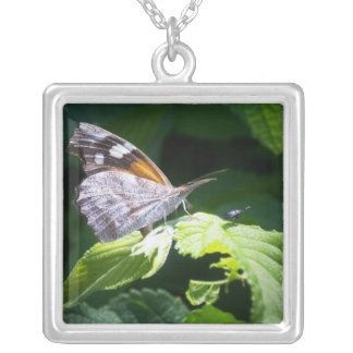 Butterfly and the Bug Square Pendant Necklace