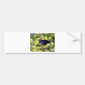 Butterfly and Yellow Flowers Bumper Sticker