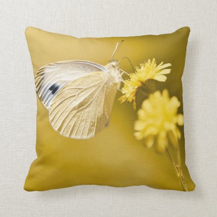 Butterfly and Yellow Flowers Throw Pillow