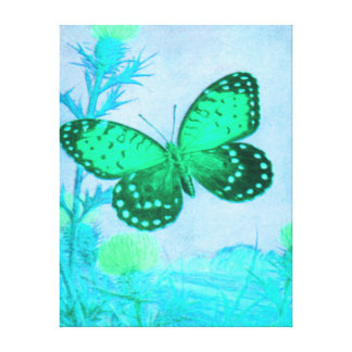 Butterfly - AQUA - GREEN Stretched Canvas Print