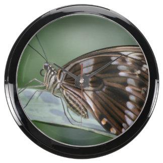 Butterfly Aquarium Clock