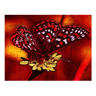 Butterfly Art Postcard