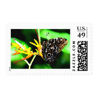 Butterfly Artwork Postage Stamp