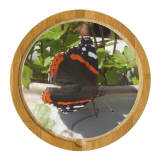 Butterfly Atalanta Cheese Board Iris