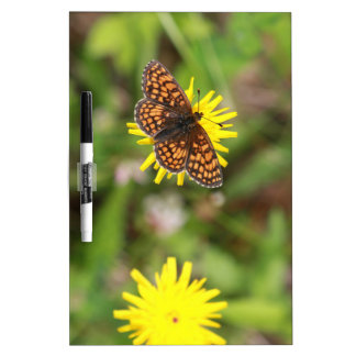 Butterfly - Beautiful! Dry Erase Boards