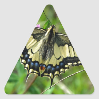 Butterfly beautiful image triangle sticker