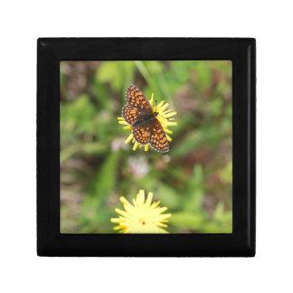 Butterfly - Beautiful! Jewelry Box
