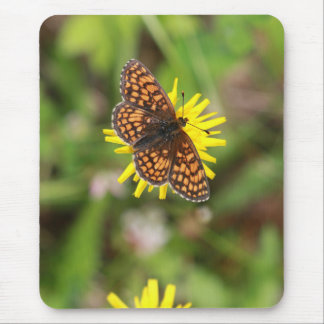 Butterfly - Beautiful! Mouse Pad