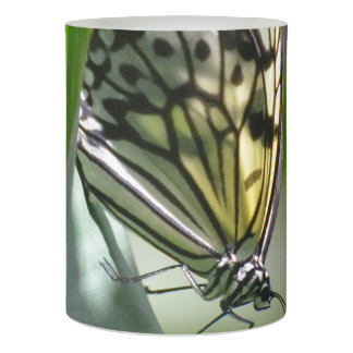 Butterfly Beauty Flameless Candle