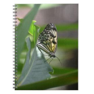 Butterfly Beauty Notebook