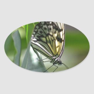 Butterfly Beauty Oval Sticker