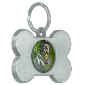 Butterfly Beauty Pet Name Tag