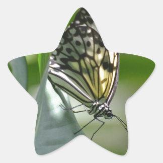 Butterfly Beauty Star Sticker