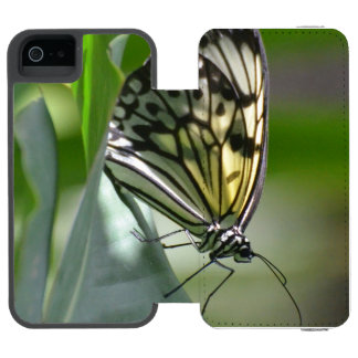 Butterfly Beauty Wallet Case For iPhone SE/5/5s