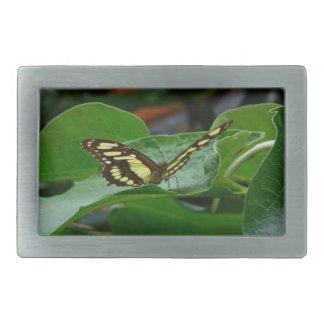 Butterfly Rectangular Belt Buckle