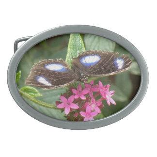 Butterfly Black Blue Pink Flowers Belt Buckle