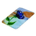 Butterfly Bloom Rectangular Magnets