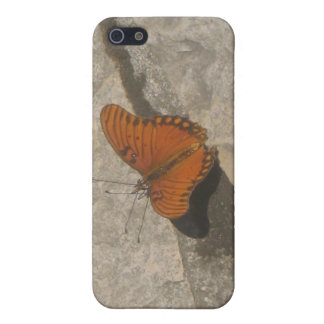 Butterfly Blossoms Spec Case Cover For iPhone 5/5S