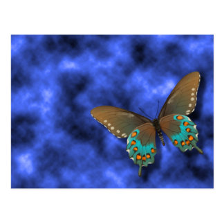 Butterfly: Blue and Brown Swallowtail Post Card