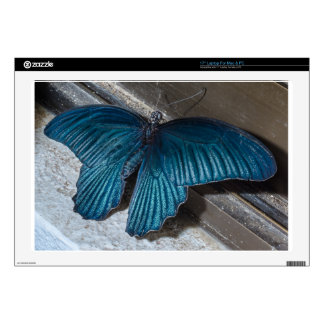 "butterfly blue insect flying beautiful wings 17"" laptop skins"