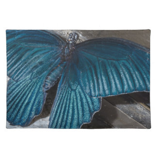 butterfly blue insect flying beautiful wings cloth placemat