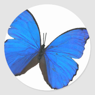 butterfly blue morpho flying skies pattern smile classic round sticker