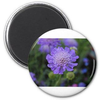 Butterfly Blue Pincushion Magnet