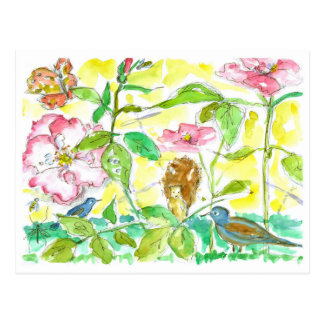 Butterfly Bluebird Bees Roses Watercolor Sketches Postcard